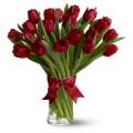 12. 25  красных тюльпанов