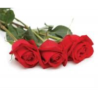 3 Голландских розы