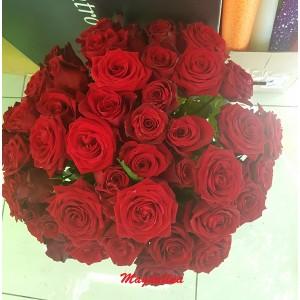 41 бордовая роза