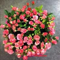 097   кустовая роза