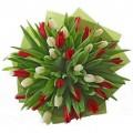 16. 51 тюльпанов