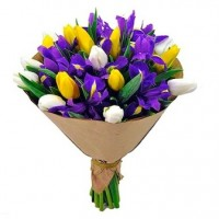 25 тюльпанов и 8 ирисов